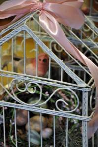 great-shot-of-bird-cage