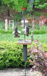 bird-area-1