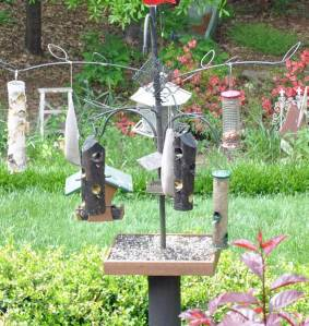 bird-feeders